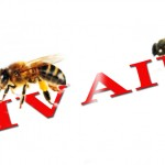BEES_HIV
