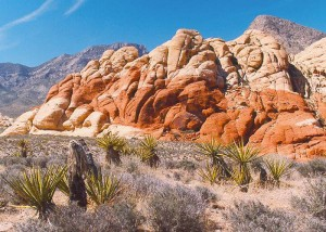 Red Rock (1)