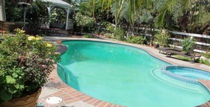 temecula-pool-trees-SPCL-UNDR-15-